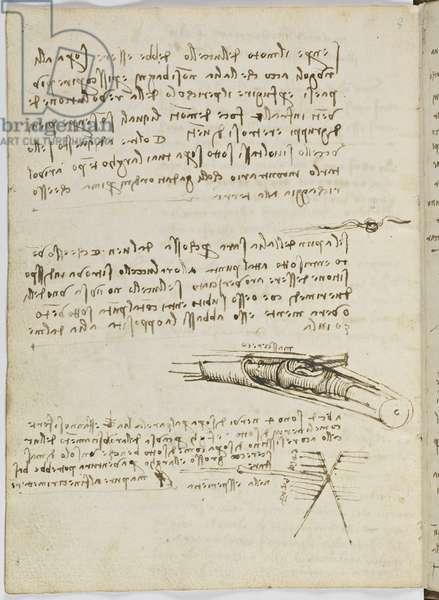 Birds Flight Code, c. 1505-06, paper manuscript, cc. 18, sheet 6 verso
