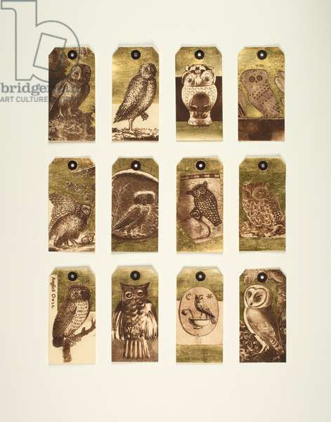 Owls in the British Museum, 2012 (mixed media, hand-printed and gilded labels)