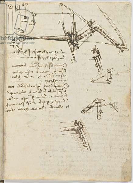 Birds Flight Code, c. 1505-06, paper manuscript, cc. 18, sheet 17 recto