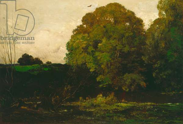 A Pond in the Morvan, 1869 (oil on canvas)