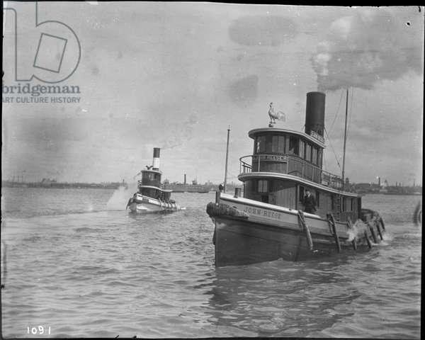 Two tugboats, 1895 (b/w photo)