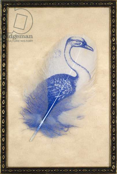 Royal Swan, 2012 (printed and collaged feather in vintage frame)