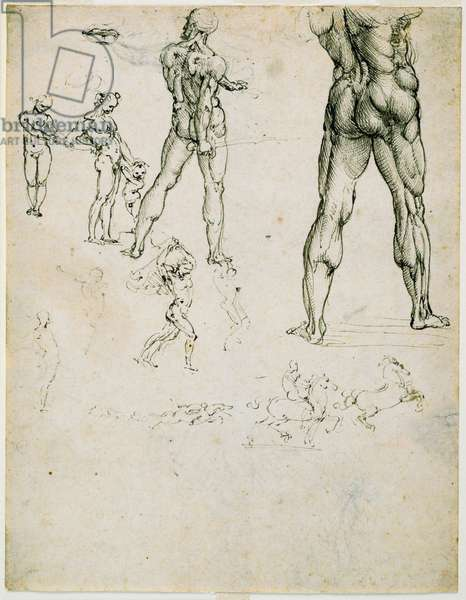 """Nudi, for the """"Battle of Anghiari"""" and other figure studies, c. 1505 (pen and brown ink, traces of charcoal on paper)"""