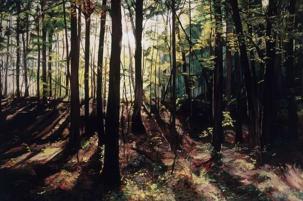Late Afternoon Landscape, Viewers Left, by Helen J. Vaughn, 2009