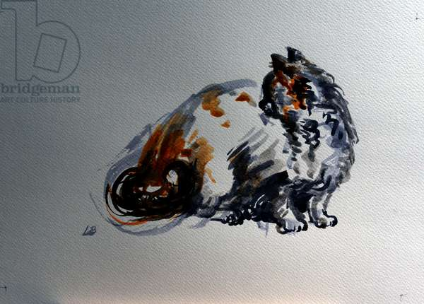Mimi, Tortoiseshell Cat, 2016 (ink on paper)