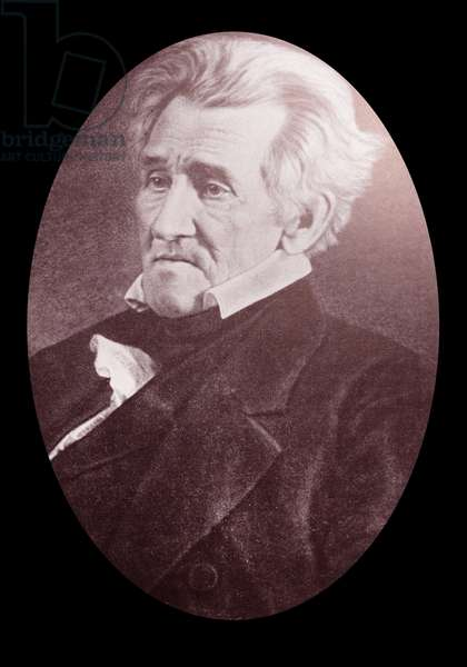 Andrew Jackson. This Daguerreotype was made at the Hermitage, Jackson's home, in 1845, against the advices of his physician, but on his own insistence.