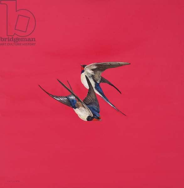 Swirl-Red,Watercolour and guache on Watercolour board, 50.8 x 50.8 cm