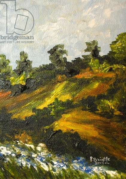 Bleuets a Trouin, 2014 (acrylic on canvas)