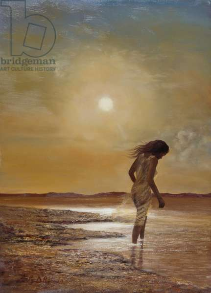 Thoughts at sunset - Desolation, 1973
