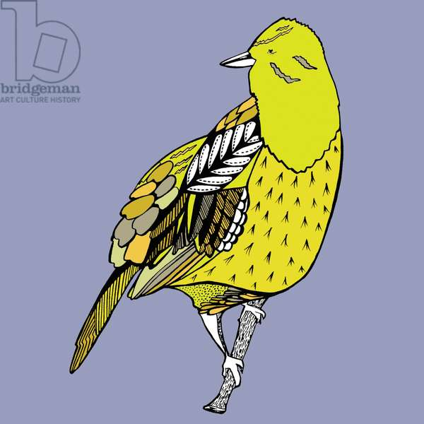 Yoko Yellowhammer, pen and in, digitally coloured