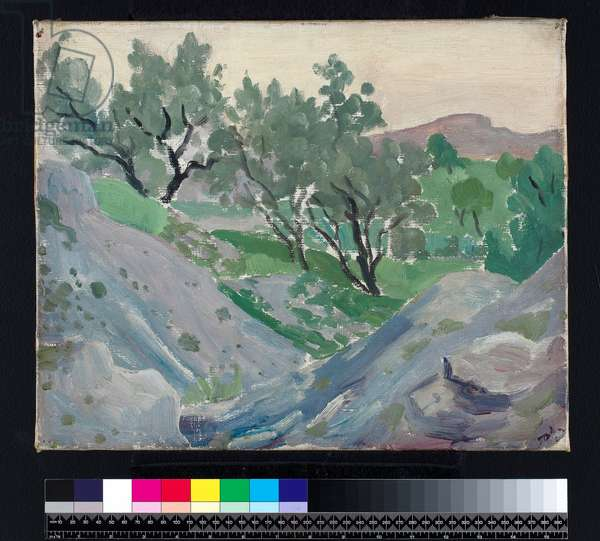 Olives in Spain, 1922 (oil on canvas)