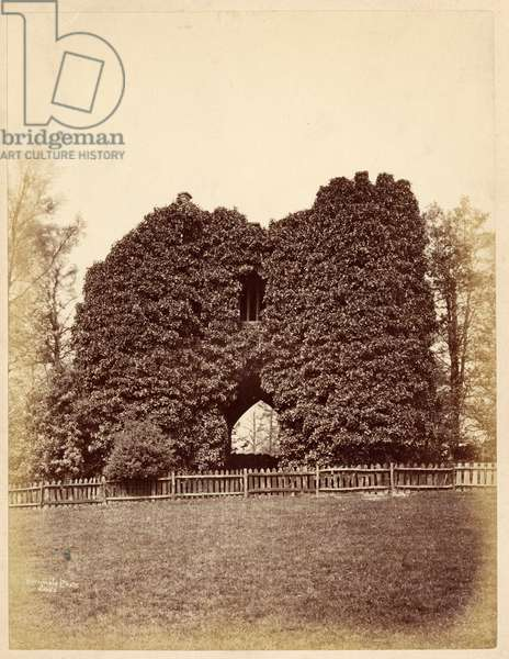 View of a folly in Roundhay Park (albumen print)