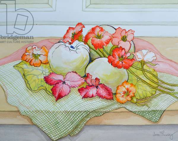 Apples and Nasturtium on a green check cloth (watercolour)