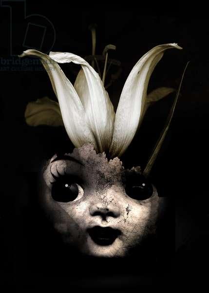 Doll flower, 2013 (Photo manipulation)
