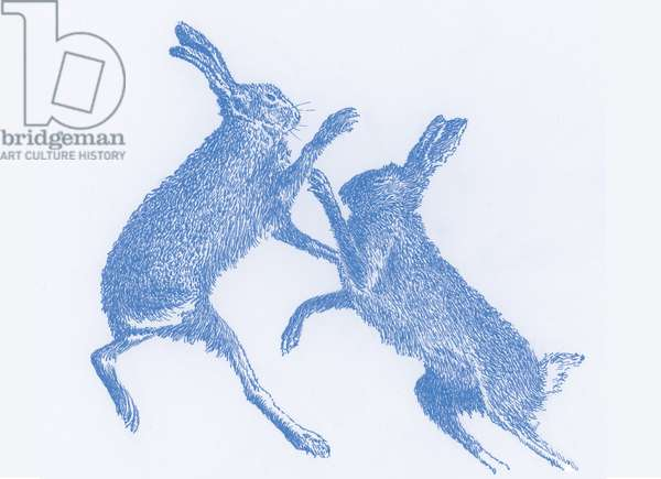 Boxing Hares, 2017, (digital)