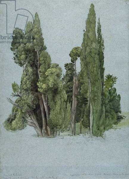 The Cypresses at the Villa d'Este, Tivoli (w/c & gouache with graphite on paper)