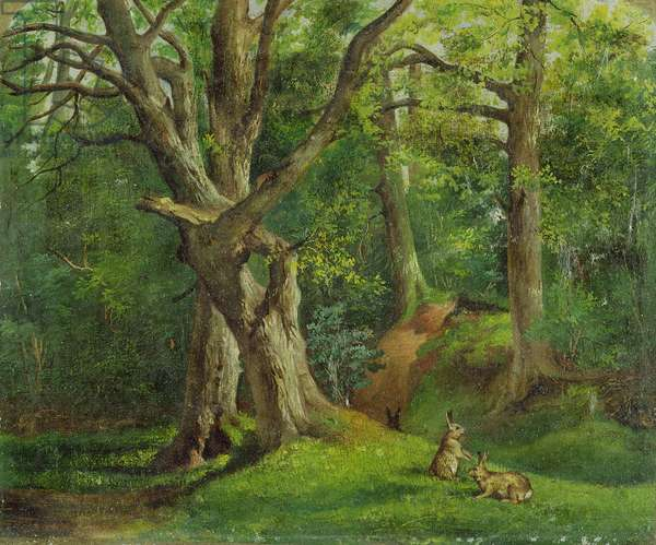 Woodland Scene with Rabbits, 1862 (oil on canvas)