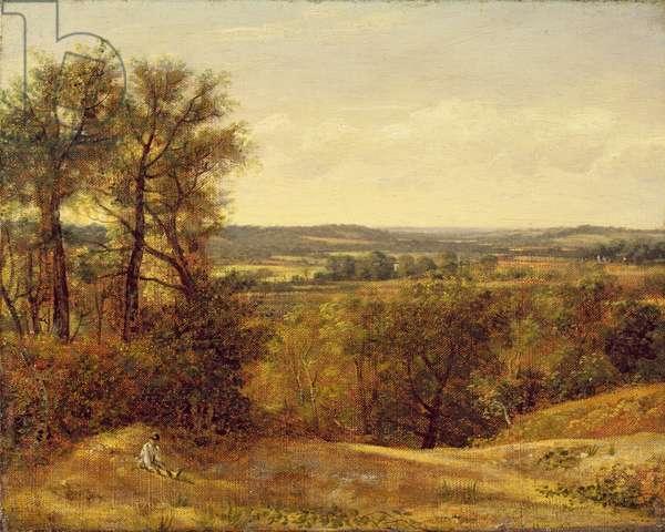 Dedham Vale, c.1802 (oil on canvas)