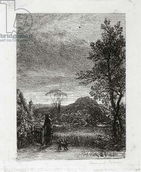 The Skylark (etching)