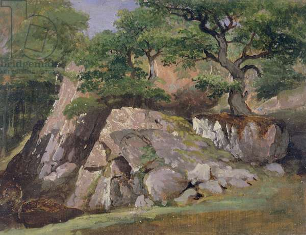 A View of the Valley of Rocks near Mittlach (oil on paper)