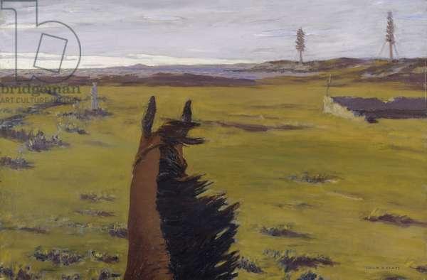 On the Old Racecourse, Sligo, 1921 (oil on canvas)