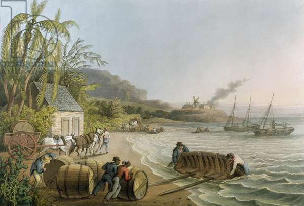 Carting and Putting Sugar Hogsheads on Board', plate X from 'Ten Views in the Island of Antigua', published by W. Clark, London, 1823 (coloured aquatint)