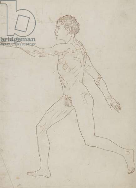 Study of the Human Figure, Lateral View, from 'A Comparative Anatomical Exposition of the Structure of the Human Body with that of a Tiger and a Common Fowl', c.1795-1806 (graphite on paper)