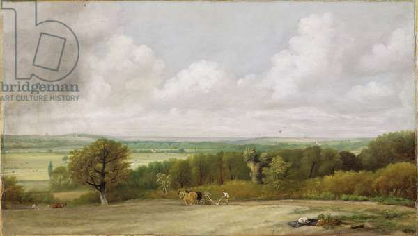 Landscape: Ploughing Scene in Suffolk (A Summerland) c.1824 (oil on canvas)