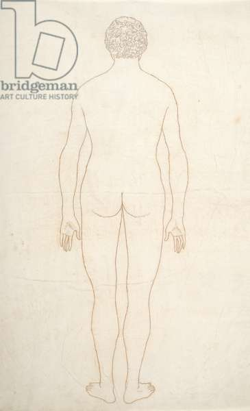 Study of the Human Figure, Posterior View, from 'A Comparative Anatomical Exposition of the Structure of the Human Body with that of a Tiger and a Common Fowl', c.1795-1806 (ink on paper)