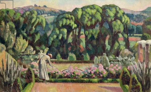 The Artist's Garden at Durbins, c.1915 (oil on canvas)