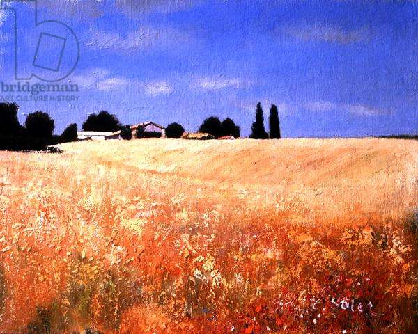 The Wheat Field, Charente-Maritime (oil on canvas)