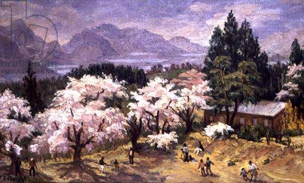 Flowers in Sakura, Japan (oil on canvas)
