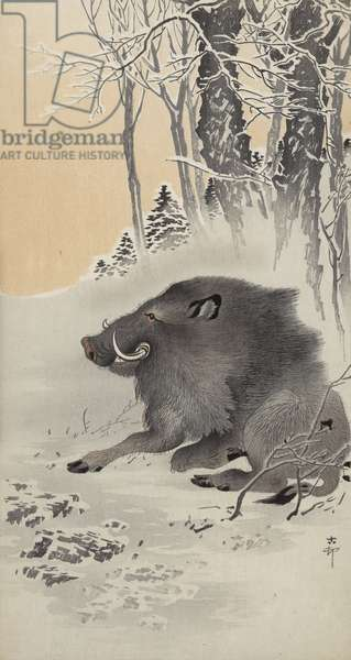 Reclining boar in a snow-covered landscape (colour woodblock print)